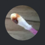Profile picture of earwax